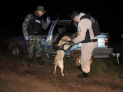 Prefectura Naval Argentina - Prefectura secuestró más de seis kilos de marihuana: un detenido